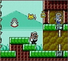 Wario Land 3 in-game