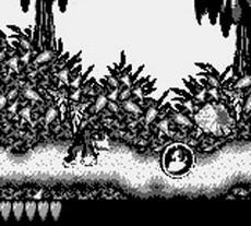 Donkey Kong Land in-game