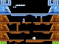 Ice Climber in-game