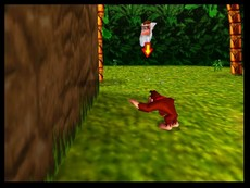 Donkey Kong 64 in-game