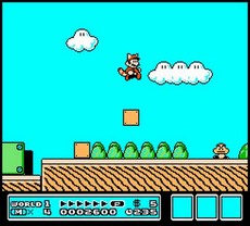 Super Mario Bros 3 in-game