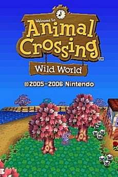 Animal Crossing : Wild World in-game